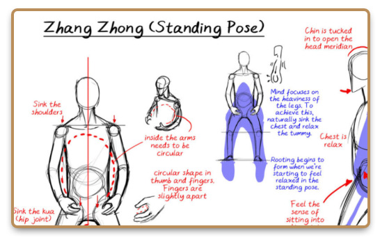 Illustration with explanation of the Zhang Zhong standing pose
