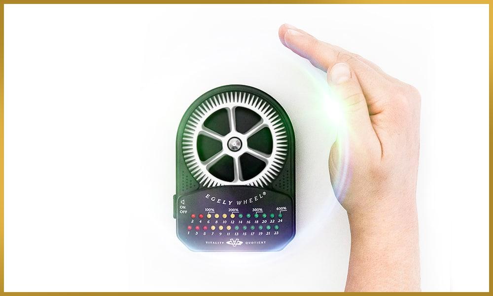 Egely Wheel telekinesis