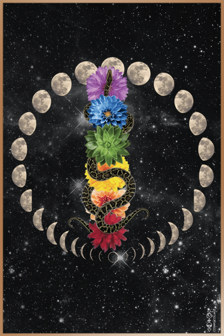 Kundalini serpent rises through the chakras (colorful flowers) as moon phases change in the sky