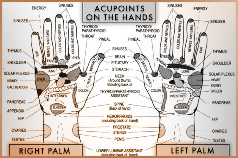Acupressure points on left and right hands