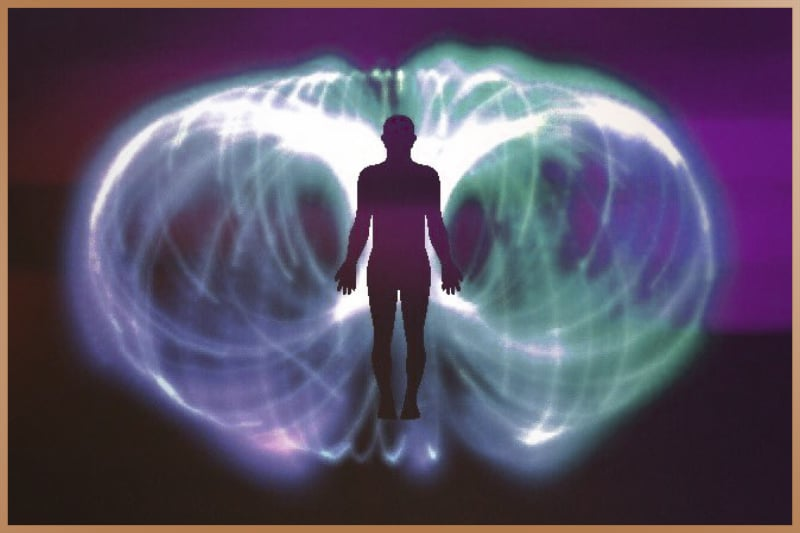 Electromagnetic field surrounds human body and all living things