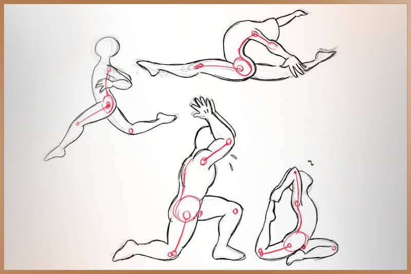 Flexibility of joints and connective tissues