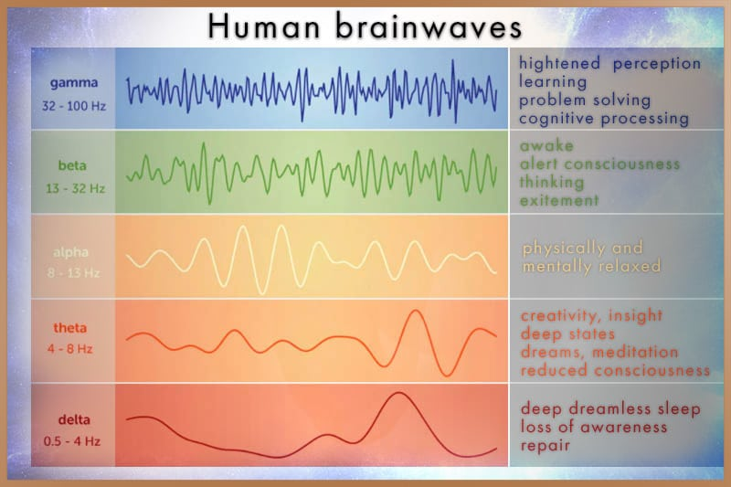 Human brainwave frequencies: gamma, beta, alpha, theta, delta