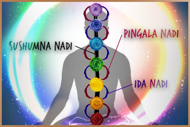 Energy (prana) is flowing through energy channels (nadis) in the human body