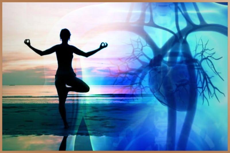 Zen yoga improves blood circulation